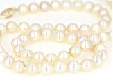 6.5-7mm Cream Cultured Japanese Akoya Pearl 14k Yellow Gold 18 inch Strand Necklace