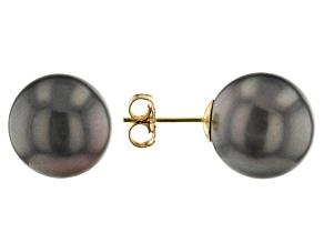 Cultured Tahitian Pearl 14k Yellow Gold Stud Earrings