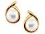 7-7.5mm White Cultured Freshwater Pearl 14k Yellow Gold Earrings