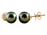 10-10.5mm Cultured Tahitian Pearl 14k Yellow Gold Stud Earrings