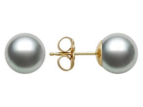 Gray Cultured Freshwater Pearl 14k Yellow Gold Stud Earrings 8-9mm
