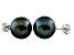 9-9.5mm Black Cultured Freshwater Pearl 14k White Gold Stud Earrings