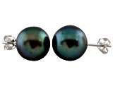 9-9.5mm Black Cultured Freshwater Pearl 14k White Gold Stud Earrings