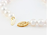 White Cultured Japanese Akoya Pearl 14k Yellow Gold Bracelet 6.5-7mm
