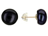 Black Cultured Freshwater Pearls 10k Yellow Gold Stud Earrings 10-11mm