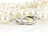 White Cultured South Sea Pearl Rhodium Over Silver Strand Necklace 11-15mm