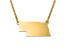 14k Yellow Gold Over Sterling Silver Nebraska Silhouette Center Station 18 inch Necklace