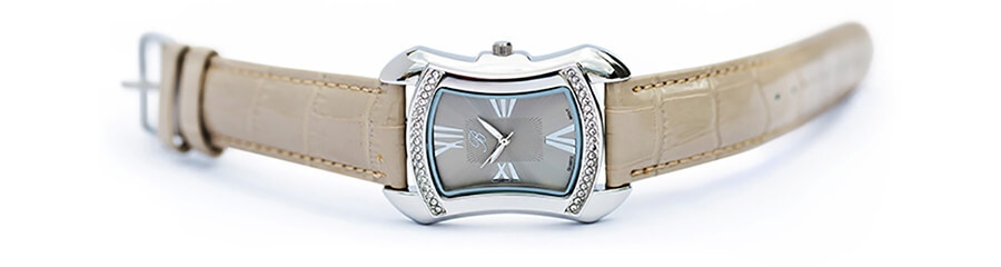 Burgi Silver Tone Watch